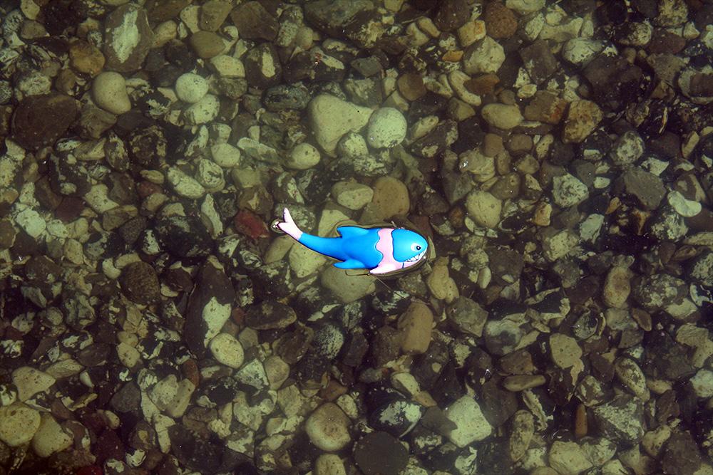 Plastik fisk i bassinet ved Bassinhusene.